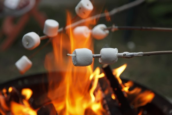 party-menu-bonfire-ideas-how-to-organize-bonfire-party-marshmallows.jpg